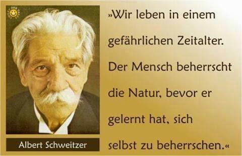 Zitate Albert Schweitzer Tiere Leben Zitate Tierleid Image