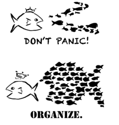 dont panic organize
